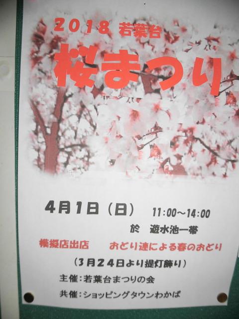 桜まつりポスター