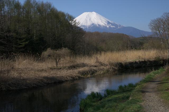 忍野・富士