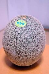 651bfa51.jpg
