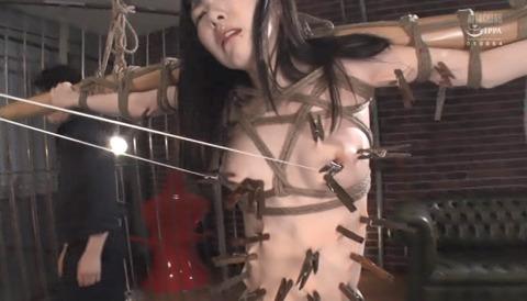 SM拷問調教 全身洗濯ばさみ責めされる女のAVエロ画像 arisaka260
