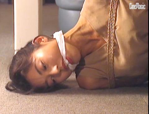 猿轡 口枷 をされる女 の 口拘束 AV エロ 画像 tanakaniziko21