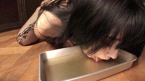 犬以下奴隷ペット女 に這いつくばって犬食いM女のエロ画像 nagai50