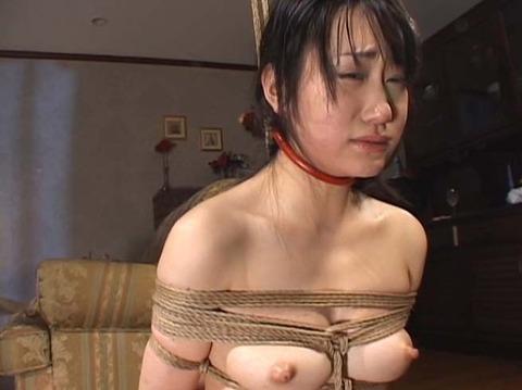 首輪女子 首輪をされる女 リードを引かれる女 の画像 shirase01