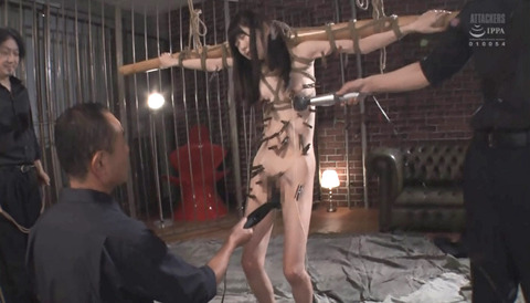 SM拷問調教 全身洗濯ばさみ責めされる女のAVエロ画像 miyuki261