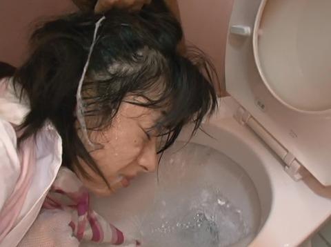 平塚ゆい サービスエリアのトイレで犯される女21
