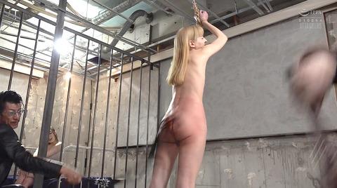 西田カリナ 強烈鞭打ち調教 足舐め 排泄管理される女AVエロ画像 130