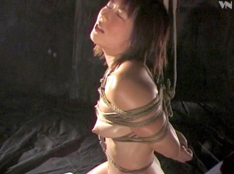 笠木忍 緊縛美 SM責め縄 緊縛調教される女の画像 84