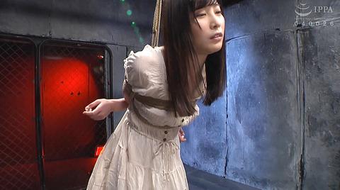 hadukimomo81