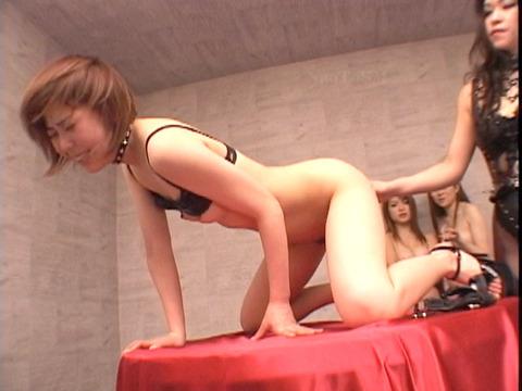 za8_36 レズSM SM飲み会 SMパーティ 惨めなマゾ女 のAV画像