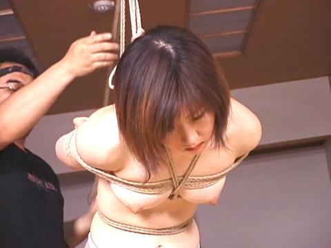 kasagishinobbu62