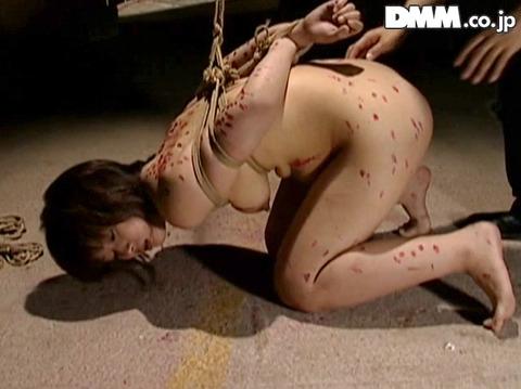 葵あげは 一本鞭責めSM拷問調教される女に画像09
