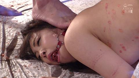 加賀美さら 惨めSM奴隷調教 踏まれてビンタされる女のAVエロ画像 52