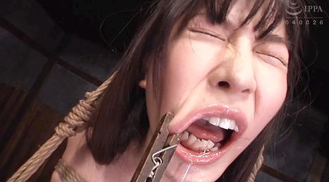 葉月桃 拷問 緊縛 胸鞭 M女 AV画像 WF愛と意識と忠誠とSM