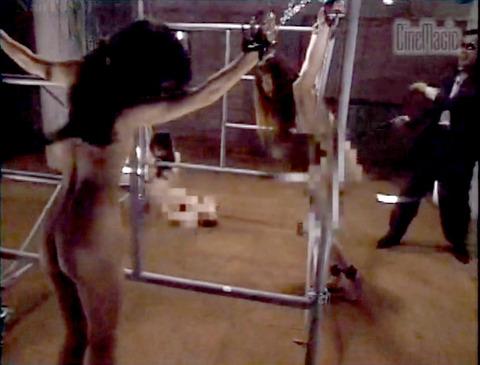 野口由香 鞭打ち 水責め 逆さ吊り SM調教画像 2000年代SMビデオ 15