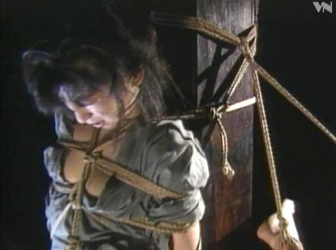 涼音えりか 責め縄 拷問緊縛 SM調教 AVエロビデオ 12