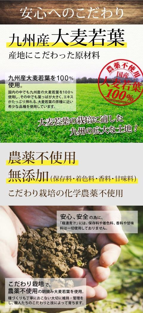 aojiru_06