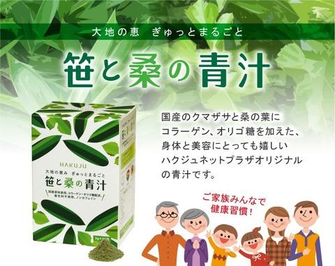 sasakuwa01