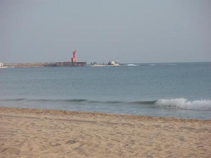 定置網魚船