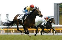無敗の三冠馬・ディープインパクト死す 頸椎骨折で安楽死処置