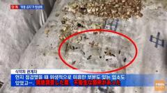 韓国で売られているキムチ 工場が糞まみれで衝撃的な衛生状態