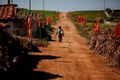 北朝鮮の4割深刻な食料不足 数百万人が飢餓の恐れ 国連発表
