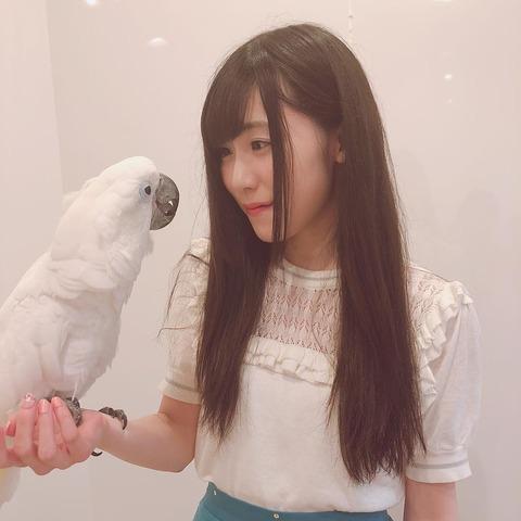 SKE48野々垣美希「ことりカフェいってきた!」 ←デカイわ!w