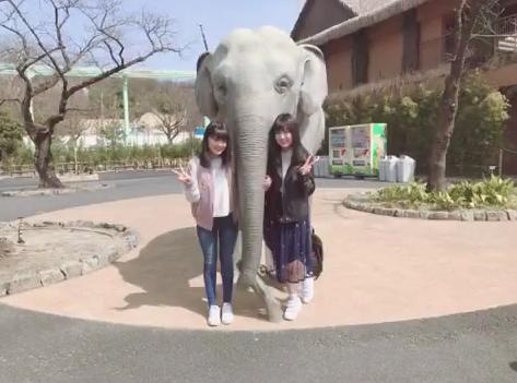 SKE48市野成美と福士奈央が東山動物園に行ったら!!!