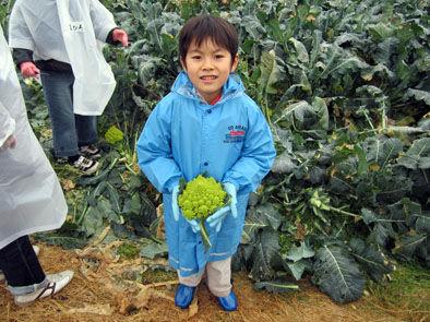 仁木農園17