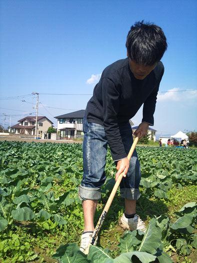 仁木農園11101640