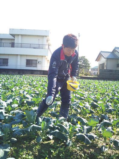 仁木農園11101629