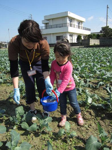 仁木農園11101633