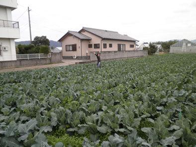 仁木農園1111021