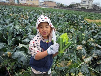 仁木農園14