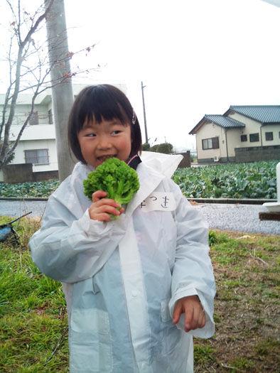 仁木農園29