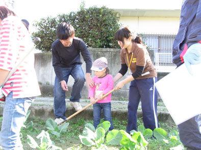 仁木農園11101612