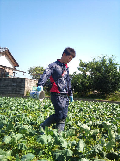 仁木農園11101623