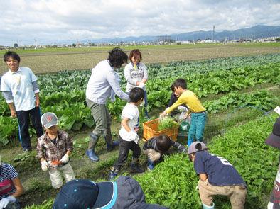 鎌田農園11102319