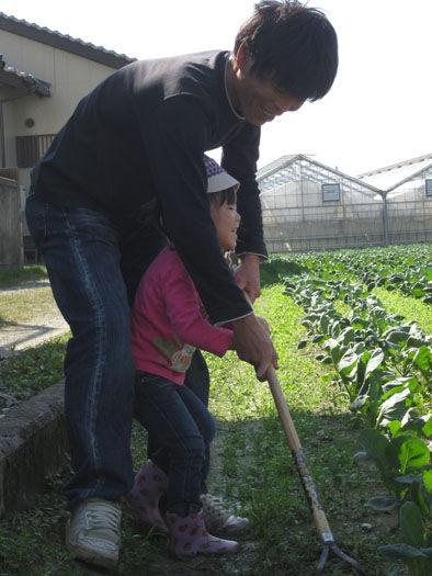 仁木農園11101614