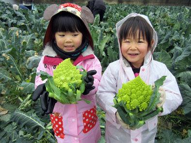 仁木農園12