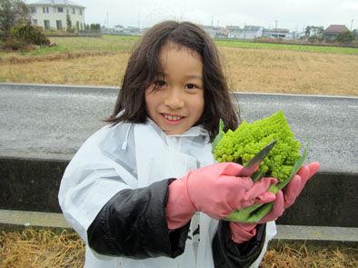 仁木農園11