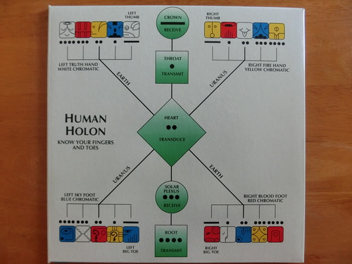 人のホロン