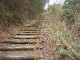 階段道が多い