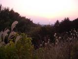 美しい夕陽でした