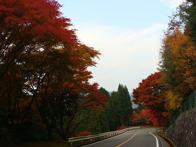 比叡山 横川から走る