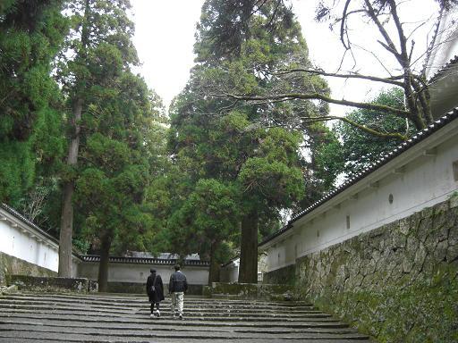 飫肥城址の石段と白壁と飫肥杉が印象的