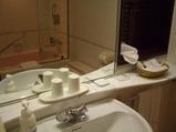 バスルーム 鏡に映るのはバスタブのガラス戸