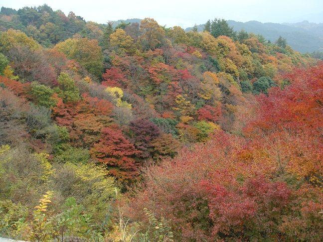 比叡山 登仙台から