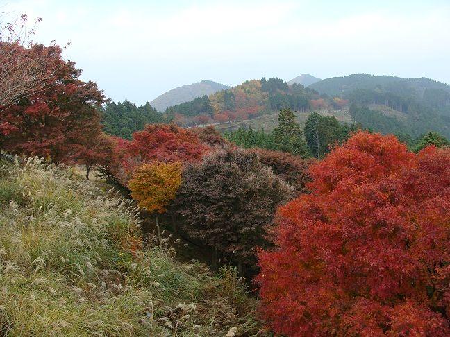 比叡山 峰道レストラン展望台から
