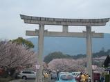 橘神社の大鳥居