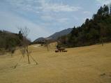 矢岳園地は植生復元林の中心にある